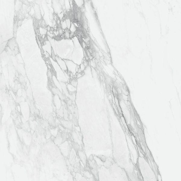 Bernini - Bianco