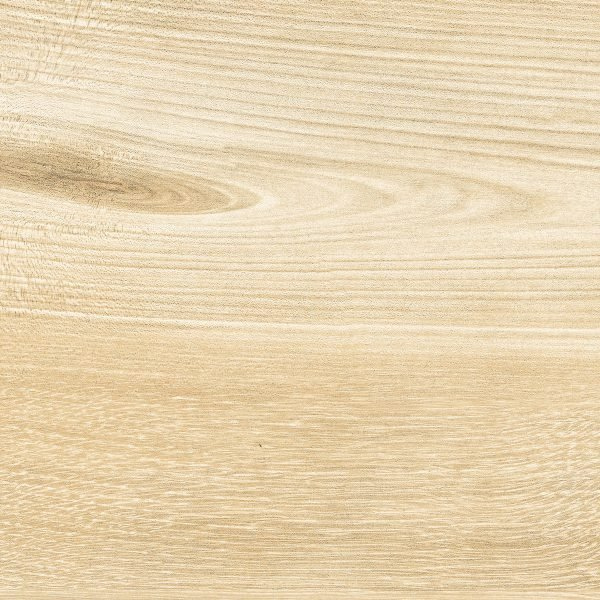 Wood - Betulla